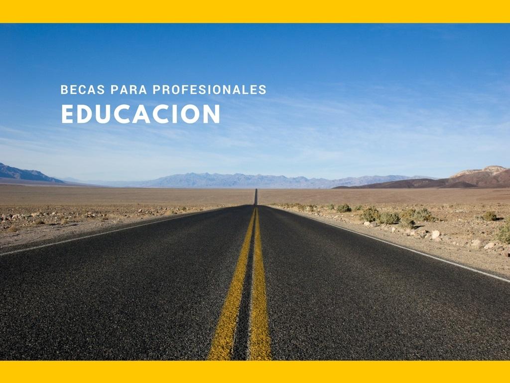 Becas En El Extranjero Para Profesionales De La Educaci N